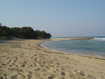 one of the nearest local beaches